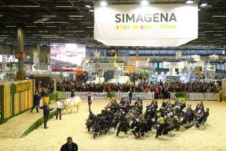Vente aux enchères SIMAGENA 2017